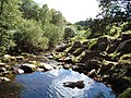 Pool Below Linhope Spout - geograph.org.uk - 556940.jpg
