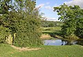 Pool in Grazing Land, near Bollington, Cheshire - geograph.org.uk - 574589.jpg