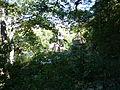 Pormenor Quinta da Regaleira (7).jpg