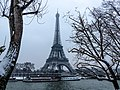 Port de La Bourdonnais 2, Paris 20 janvier 2013.jpg