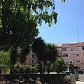 Praça Dr. Teixeira de Aragão - Jardim.jpg