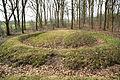 Prehistorische grafheuvels bij Toterfout - Halve Mijl 06.JPG