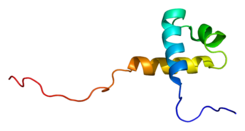 Protein MTA1 PDB 2crg.png