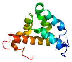 Protein NCOA3 PDB 1kbh.png