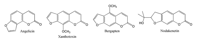 Structures of angelicin, xanthotoxin, bergapten and nodekenetin