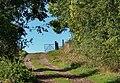 Pushing on an open gate - geograph.org.uk - 993511.jpg