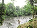 Puyo paseo turístico 5 ene 2015 058 (16032135120).jpg