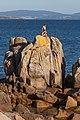 Ría de Pontevedra. San Vicente do Mar O Grove Galiza 005.jpg