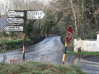 R619 road (Ireland) - R619 near Dripsey