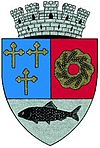 Coat of arms of Urziceni
