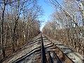 Railroad tracks in Windham, December 2018.JPG