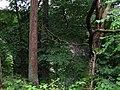 Railway viaduct in trees - geograph.org.uk - 925399.jpg