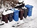 Reciclaje-alemania-balingen-basura.jpg