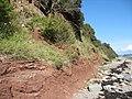 Reddish rocks in the cliff near Tal-y-Foel - geograph.org.uk - 523470.jpg