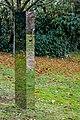 Reflexionen (Minka Strickstrock) jm88381.jpg