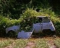 Renault 4 (2).jpg