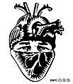 Resiste Corazón (Póster).jpg