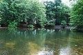 Resten van oud zwembad (31423880922).jpg