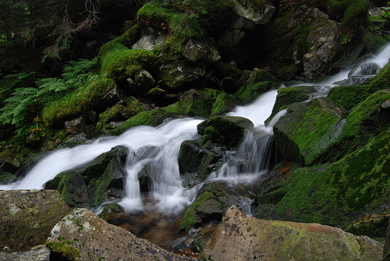File:Retezat Mountain - Spring Waterfall 01.JPG