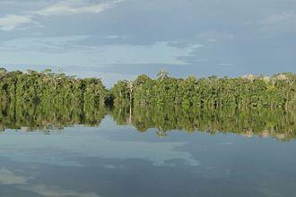 Alto Rio Negro Indigenous Territory - Içana River