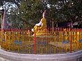 Rishikesh harid3013775833war (40).JPG