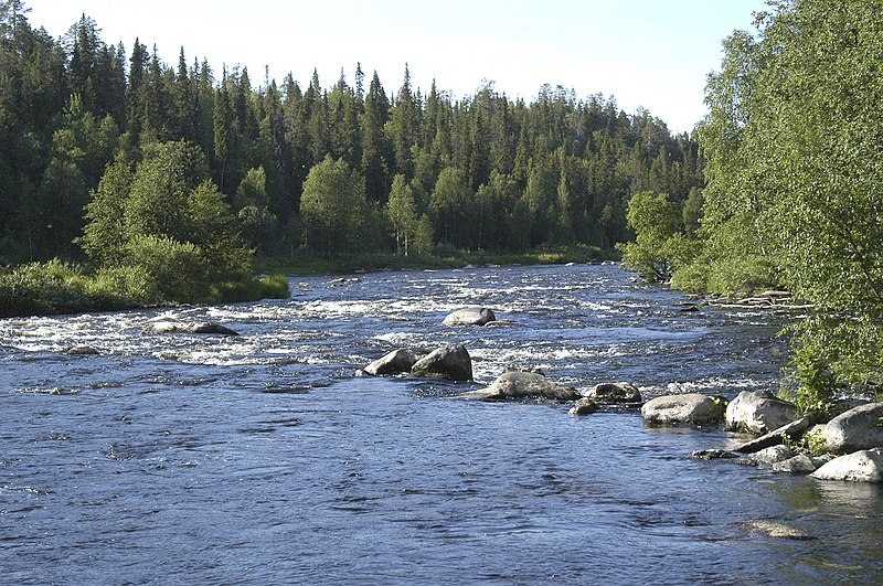 File:River Kuusinki, july 2005 - panoramio.jpg