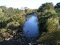 River Swale from Catterick Bridge - geograph.org.uk - 276680.jpg