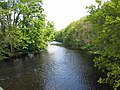 River Wharfe, Nr East Keswick - geograph.org.uk - 8953.jpg