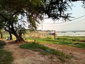 Riverside in Village by Tawhidur Rahman Dear.jpg