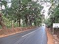 Roads in Goa.jpg