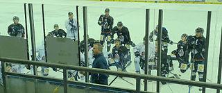 Rob Wilson (ice hockey) Canadian ice hockey player and coach