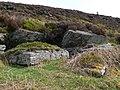 Rocks and moorland - geograph.org.uk - 417590.jpg