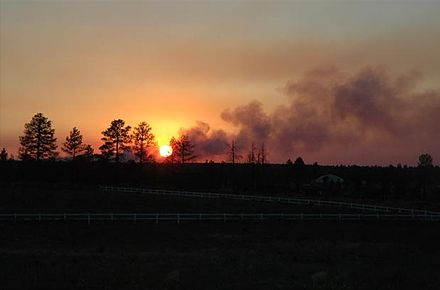 A view of the fire from Bison Ranch in Heber-Overgaard, Arizona Rodeo-Chediski Fire.jpg