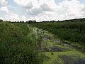Rokach river2.JPG