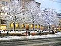 Rue de la Corraterie, Geneve - panoramio (2).jpg