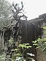 Ruinas de la Hacienda de La Erre (muro), Dolores Hidalgo, Guanajuato.jpg
