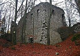 Ruine-poppberg.jpg