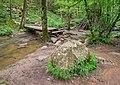 Ruisseau des Palanges (13).jpg