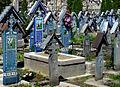 Rumunia, Sapanta, Wesoły Cmentarz(Aw58)11.JPG