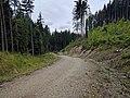 SA 440 service road - panoramio (1).jpg