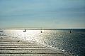 Sailboats (9524295092).jpg