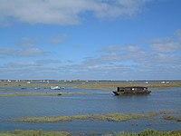 Salt marshes - geograph.org.uk - 205488.jpg