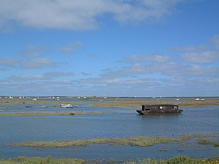 North Norfolk Coast Site of Special Scientific Interest Area of European importance for wildlife in Norfolk, England
