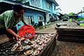 Samutsakorn ThaChalom Fishing village 3.jpg