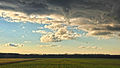 Sandhill Crane Migration (8156308025).jpg