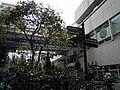 Sannomiya Center-gai - panoramio - DVMG (3).jpg