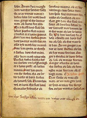 "Scanian dialect -  Anders Sunesøn's 13th century version of the Scanian Law and Church Law, containing a comment in the margin called the ""Skaaningestrof"": ""Hauí that skanunga ærliki mææn toco vithar oræt aldrigh æn."" (Let it be known that Scanians are honorable men who have never tolerated injustice.)"