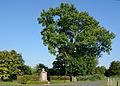 Schleswig-Holstein, Büttel, Ehrenmal NIK 9627.JPG
