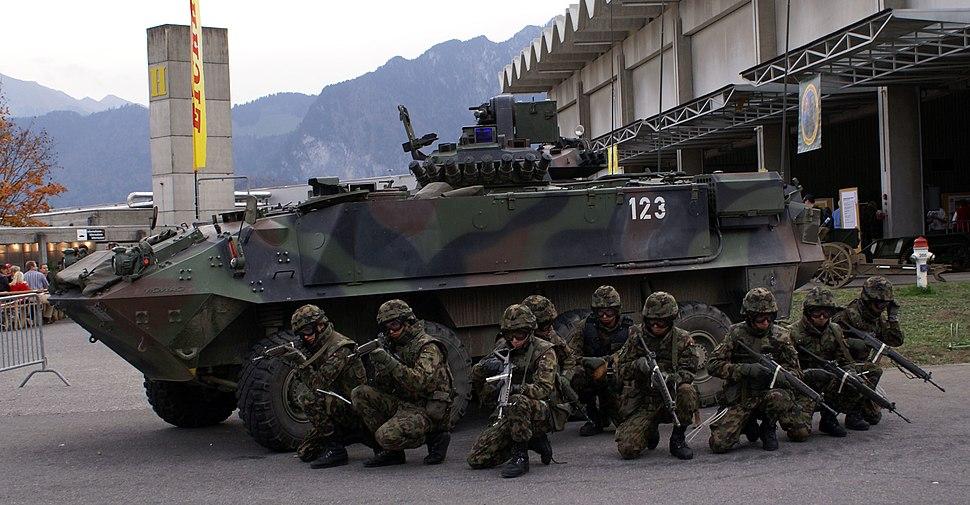 Schweizer Armee Füs Gr