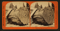 Section of the Original Big Tree - near view, Mammoth Grove, Calaveras County, by Lawrence & Houseworth 3.png